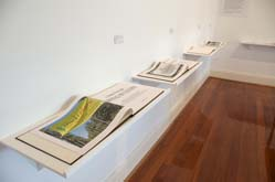 Installation view by Bruce Searle at Annandale Galleries